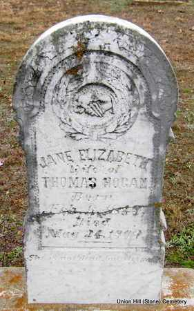 HOGAN, JANE ELIZABETH - White County, Arkansas | JANE ELIZABETH HOGAN - Arkansas Gravestone Photos