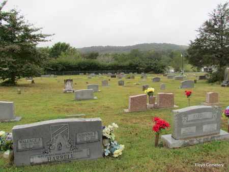 *OVERVIEW,  - White County, Arkansas |  *OVERVIEW - Arkansas Gravestone Photos