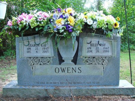 OWENS, SHARON KAY PRUETT (TWIN) - White County, Arkansas   SHARON KAY PRUETT (TWIN) OWENS - Arkansas Gravestone Photos