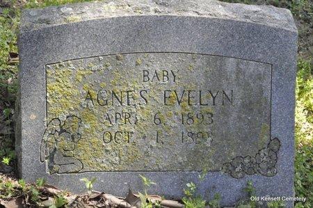 PLACKARD, AGNES EVELYN - White County, Arkansas | AGNES EVELYN PLACKARD - Arkansas Gravestone Photos