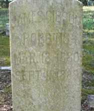 ROBBINS, JAMES GIBSON - White County, Arkansas | JAMES GIBSON ROBBINS - Arkansas Gravestone Photos