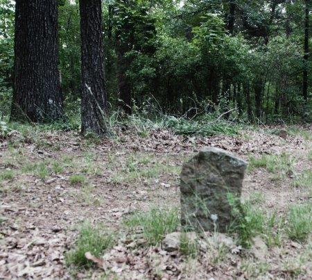 ROSS, HANNAH CAROLINE - White County, Arkansas | HANNAH CAROLINE ROSS - Arkansas Gravestone Photos