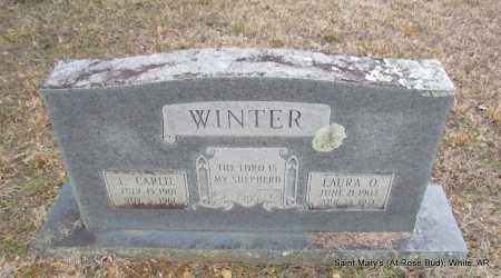 WINTER, J CARLIE - White County, Arkansas | J CARLIE WINTER - Arkansas Gravestone Photos