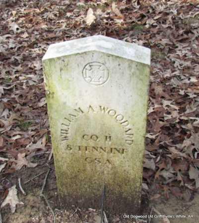 WOODARD (VETERAN CSA), WILLIAM A - White County, Arkansas | WILLIAM A WOODARD (VETERAN CSA) - Arkansas Gravestone Photos