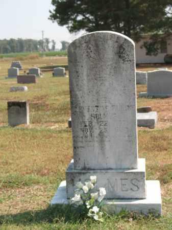 HOLMES, CLEMENTINE PAULINE - Woodruff County, Arkansas | CLEMENTINE PAULINE HOLMES - Arkansas Gravestone Photos