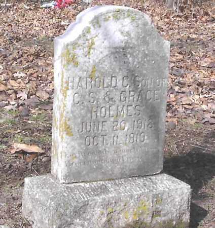 HOLMES, HAROLD C. - Woodruff County, Arkansas | HAROLD C. HOLMES - Arkansas Gravestone Photos