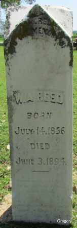 REED, W A - Woodruff County, Arkansas | W A REED - Arkansas Gravestone Photos