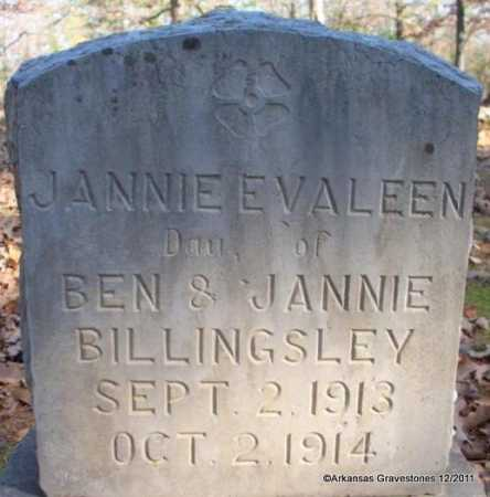 BILLINGSLEY, JANNIE EVALEEN - Yell County, Arkansas | JANNIE EVALEEN BILLINGSLEY - Arkansas Gravestone Photos