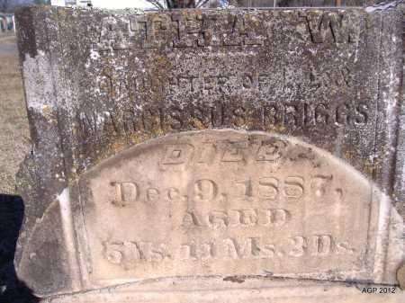 BRIGGS, ALTHA W - Yell County, Arkansas | ALTHA W BRIGGS - Arkansas Gravestone Photos