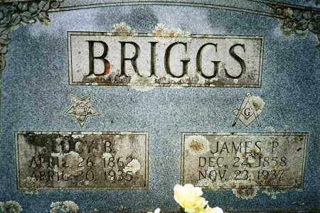 "BRIGGS, AMANDA BLAIR  ""LUCY"" - Yell County, Arkansas 