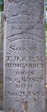 BUMGARNER, THOMAS EDGAR - Yell County, Arkansas | THOMAS EDGAR BUMGARNER - Arkansas Gravestone Photos