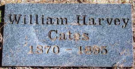 CATES, WILLIAM HARVEY - Yell County, Arkansas   WILLIAM HARVEY CATES - Arkansas Gravestone Photos