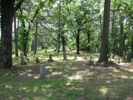 *CEMETERY VIEW,  - Yell County, Arkansas |  *CEMETERY VIEW - Arkansas Gravestone Photos