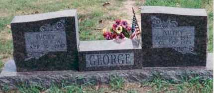 HATFIELD GEORGE, IVORY - Yell County, Arkansas | IVORY HATFIELD GEORGE - Arkansas Gravestone Photos