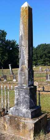 SCROGGINS JAMES, MARTHA B - Yell County, Arkansas | MARTHA B SCROGGINS JAMES - Arkansas Gravestone Photos