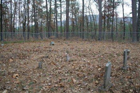 *LEE CEMETERY VIEW,  - Yell County, Arkansas    *LEE CEMETERY VIEW - Arkansas Gravestone Photos