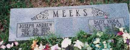 MEEKS, JOSEPH ANDREW - Yell County, Arkansas | JOSEPH ANDREW MEEKS - Arkansas Gravestone Photos