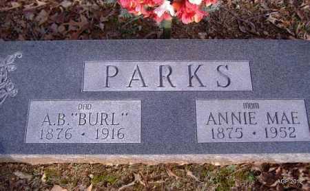 "PARKS, ARTHUR B ""BURL"" - Yell County, Arkansas | ARTHUR B ""BURL"" PARKS - Arkansas Gravestone Photos"
