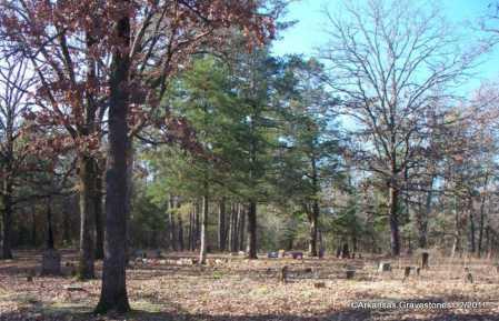 *  OVERVIEW,  - Yell County, Arkansas |  *  OVERVIEW - Arkansas Gravestone Photos
