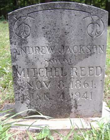 REED, ANDREW JACKSON - Yell County, Arkansas | ANDREW JACKSON REED - Arkansas Gravestone Photos