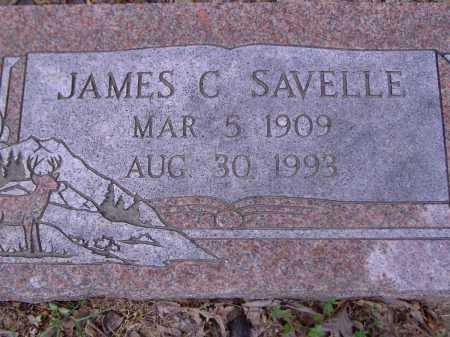 SAVELLE, JAMES C - Yell County, Arkansas | JAMES C SAVELLE - Arkansas Gravestone Photos