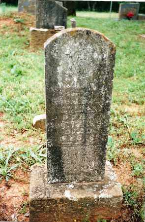 STEVENSON, WILLIAM A - Yell County, Arkansas | WILLIAM A STEVENSON - Arkansas Gravestone Photos