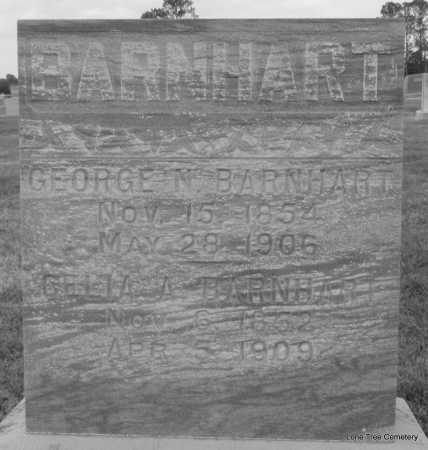 BARNHART, GEORGE N - Arkansas County, Arkansas | GEORGE N BARNHART - Arkansas Gravestone Photos