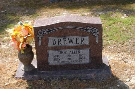 BREWER, TROY ALLEN - Arkansas County, Arkansas | TROY ALLEN BREWER - Arkansas Gravestone Photos