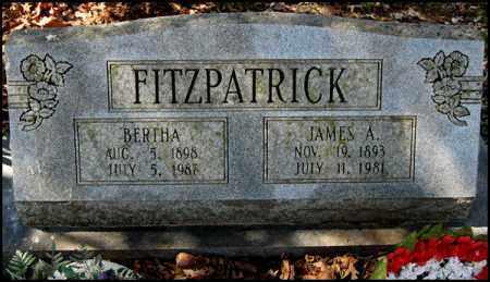 FITZPATRICK, JAMES A. - Arkansas County, Arkansas | JAMES A. FITZPATRICK - Arkansas Gravestone Photos