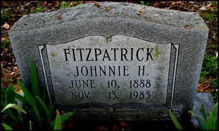 FITZPATRICK, JOHNNIE H. - Arkansas County, Arkansas | JOHNNIE H. FITZPATRICK - Arkansas Gravestone Photos