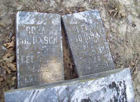 JOHNSON, PLEASO - Arkansas County, Arkansas   PLEASO JOHNSON - Arkansas Gravestone Photos
