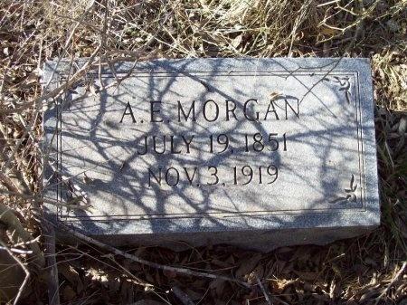 MORGAN, ALVINA ELIZABETH - Arkansas County, Arkansas | ALVINA ELIZABETH MORGAN - Arkansas Gravestone Photos