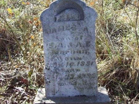 MORGAN, JAMES A. - Arkansas County, Arkansas | JAMES A. MORGAN - Arkansas Gravestone Photos