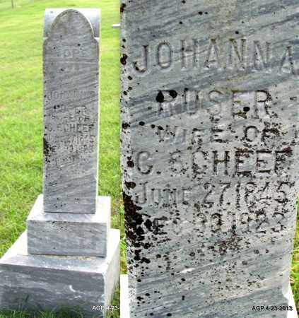 SCHEEF, JOHANNA - Arkansas County, Arkansas | JOHANNA SCHEEF - Arkansas Gravestone Photos