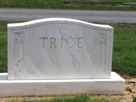 TRICE, FAMILY STONE - Arkansas County, Arkansas | FAMILY STONE TRICE - Arkansas Gravestone Photos