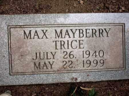 TRICE, MAX - Arkansas County, Arkansas | MAX TRICE - Arkansas Gravestone Photos