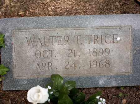 TRICE, WALTER T - Arkansas County, Arkansas | WALTER T TRICE - Arkansas Gravestone Photos