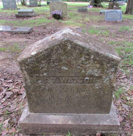 WATSON, B T - Arkansas County, Arkansas | B T WATSON - Arkansas Gravestone Photos
