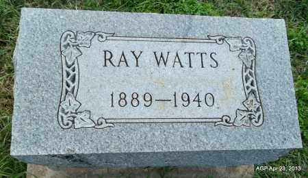 WATTS, RAY - Arkansas County, Arkansas | RAY WATTS - Arkansas Gravestone Photos