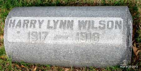 WILSON, HARRY LYNN - Arkansas County, Arkansas | HARRY LYNN WILSON - Arkansas Gravestone Photos