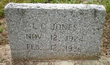 JONES, L C - Ashley County, Arkansas | L C JONES - Arkansas Gravestone Photos