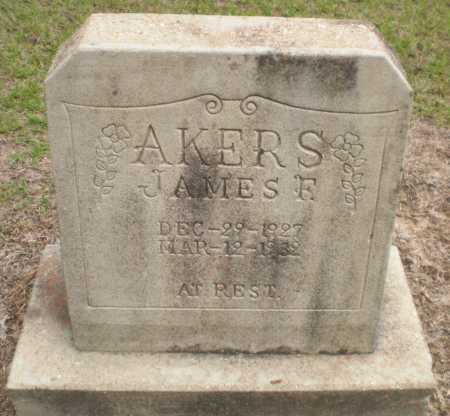 AKERS, JAMES F - Ashley County, Arkansas | JAMES F AKERS - Arkansas Gravestone Photos