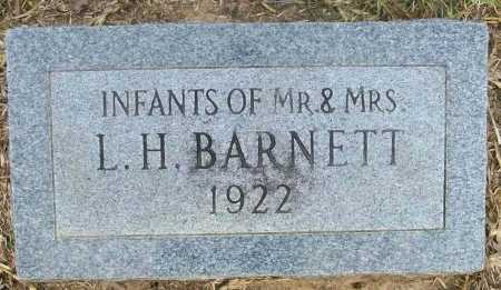 BARNETT, INFANTS - Ashley County, Arkansas | INFANTS BARNETT - Arkansas Gravestone Photos