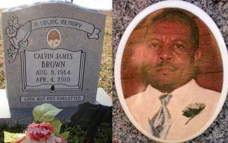 BROWN, CALVIN JAMES - Ashley County, Arkansas | CALVIN JAMES BROWN - Arkansas Gravestone Photos