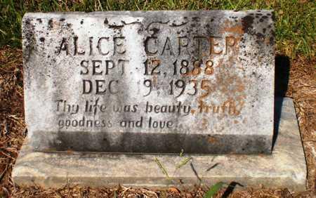 CARTER, ALICE - Ashley County, Arkansas | ALICE CARTER - Arkansas Gravestone Photos