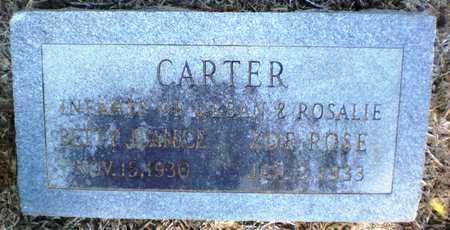 CARTER, ZOE ROSE - Ashley County, Arkansas | ZOE ROSE CARTER - Arkansas Gravestone Photos