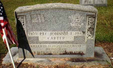 CARTER, JOHNNIE F - Ashley County, Arkansas | JOHNNIE F CARTER - Arkansas Gravestone Photos