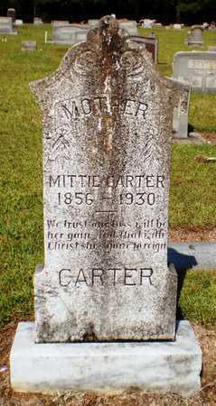 CARTER, MITTIE - Ashley County, Arkansas | MITTIE CARTER - Arkansas Gravestone Photos