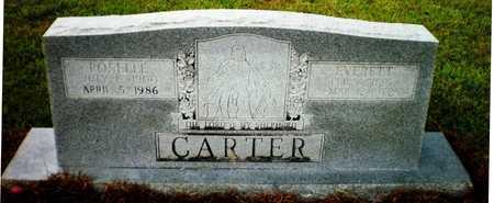 CARTER, EVERETT - Ashley County, Arkansas | EVERETT CARTER - Arkansas Gravestone Photos