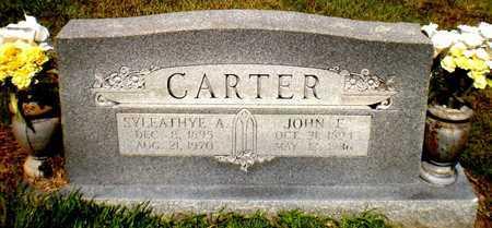 CARTER, JOHN E - Ashley County, Arkansas | JOHN E CARTER - Arkansas Gravestone Photos